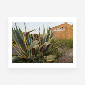 Soledad de Val, obras a la venta de fotografía